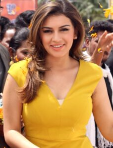 Hansika Motwani Net Worth